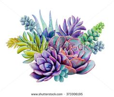 watercolor succulent plants composition, floral bouquet illustration, isolated on white background royalty-free watercolor succulent plants composition floral bouquet illustration isolated on white background stock vector art & more images of art Succulents Drawing, Watercolor Succulents, Planting Succulents, Watercolor Flowers, Watercolor Paintings, Succulent Plants, Succulents Painting, Gouache Painting, Watercolor Images
