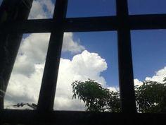 Nube con forma de oso desde la ventana de la oficina...
