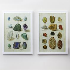 S/2 Gemstones of the World S/2 Wall Art Pine/Glass/MDC © Two's Company- want these!
