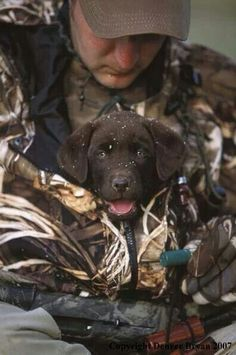 i love duck hunting dogs .To Cute Bet he wont get out to.-i love duck hunting dogs ….To Cute Bet he wont get out to fetch a duck Looks … i love duck hunting dogs ….To Cute Bet he wont get out to fetch a duck Looks much to warm - I Love Dogs, Cute Dogs, Cute Puppies, Duck Hunting Dogs, Coyote Hunting, Pheasant Hunting, Turkey Hunting, Archery Hunting, Quail Hunting