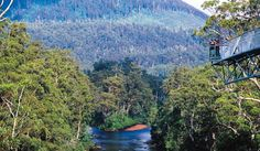 Top 7 gourmet walk adventures for the weekend Beautiful Homes, Beautiful Places, Bruny Island, Tasmania, Continents, Australia, River, Explore, Adventure