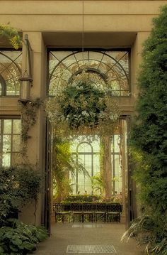 A View from Within--Longwood Gardens Conservatory