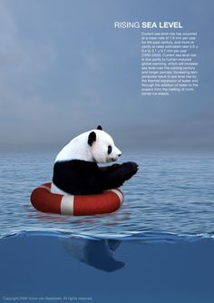 Global Warming Posters    #AmbarEnvironmental #AmbarSkimmer #Green www.ambarenvironmental.com