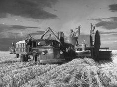 Vintage Trucks Classic Photographic Print: Farm Life Poster by Joe Scherschel : - Vintage Tractors, Old Tractors, Vintage Farm, Vintage Trucks, Antique Tractors, Vintage Auto, Vintage Ideas, Vintage Travel, Vintage Designs