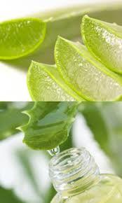 Inyección de belleza natural, el Aloe Vera