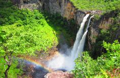 Parque Nacional das Emas. Está localizado entre os estados de Goiás e Mato Grosso do Sul.
