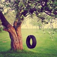 "A tire swing and a tree...the new giant play structures don't even compare.  My childhood tire swing was hung from the big old maple tree in our backyard - ""horizontally"" - so I could sit in  it like an inner tube - talk about fun!"