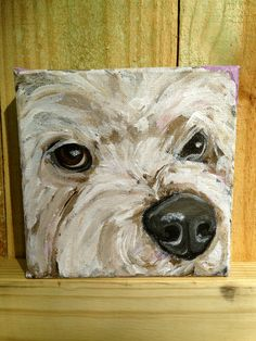 """6""""x6"""" Bichon Frise Painting from """"Ready to Adopt"""" Series.  This painting is completed and ready to ship fromhttp://www.etsy.com/shop/JosieBloomArt"""