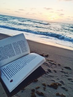 With summer beach days here, we all tend to grab the same old weathered  book on our shelf that we've read five too many times. When the waves are  too big or too small, or you just want to grab a beer and have some peace  and quiet, here are six epic surf book recommendations to help you pass th