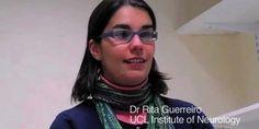 Portuguesa premiada por investigação sobre a doença de Alzheimer