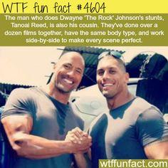 Dwayne Johnson's stunt double - WTF fun facts