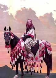 On this site, it sells a DVD on how to make native Arabian costumes!