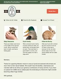 Email Templates | MailChimp - emailing - www.eewee.fr