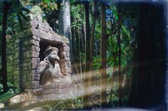 I Found An Old #Photo #Disney #Disneyland #JungleCruise