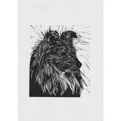 Cardboard Shipping Boxes, Animal Sketches, Linocut Prints, Sheltie, Dog Art, All Print, Pet Portraits, Printmaking, Poppy