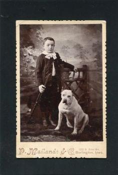 Cabinet-Card-Photograph-PitBull-Dog-Boy-GUN-Rifle-photo-Burlington-IOWA