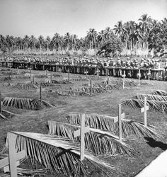 U.S. Marines on Guadalcanal hold a service for the dead before leaving the island to the Army, 1942.