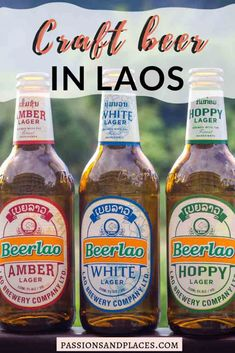 Beerlao isn't the only player on the Lao beer scene anymore. Craft breweries are popping up, and Ryan's guide covers the best and worst of craft beer in Laos. Laos Travel, Asia Travel, Food Inspiration, Travel Inspiration, Best Craft Beers, Vientiane, Exotic Food, Travel Activities, Best Beer