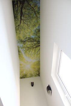 "Fototapete ""Wald"" im Treppenhaus"