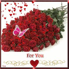 If you& planning a proposal, 100 red roses is a must! A 100 red roses bouquet indicates endless love, perfect when you& going down on one knee! Water Flowers, Love Flowers, 100 Red Roses, Beau Gif, Ronsard Rose, Rose Stem, Love Rose, Beautiful Roses, Lady In Red