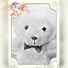 #Little #bear #white #pelouche #cute #TeddyBear ♡