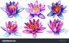 watercolor lotus flowers on an isolated white background, hand drawing, greeting card with place for text - Buy this stock illustration and explore similar illustrations at Adobe Stock Lotus Flower Art, Lotus Flower Tattoo Design, Flower Tattoo Hand, Flower Tattoos, Penny Black, Mommy Tattoos, Bodysuit Tattoos, Watercolor Wrist Tattoo, Marathon Tattoo