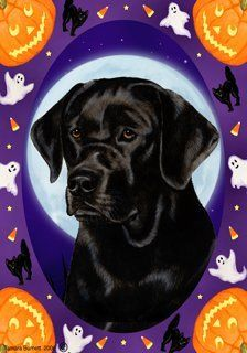 Black Labrador Retriever by Tamara Burnett Halloween Howls Garden Dog Breed Flags 12'' x 18'' by Unknown. $15.99. Indoor/Outdoor flag is 12 x 18 inches and is made from 2 pieces of fabric sewn back to back to withstand even the most severe weather. This allows the text and image to be seen the same from both sides. Pole and bracket are not included. Great flag especially for upcoming Halloween night.  Made in USA
