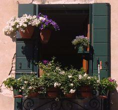 window garden pins | Window garden