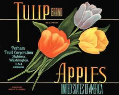 free cross stitch pattern Tulip apples fruit crate label
