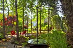 Same garden viewed from behind (rather than from the house)
