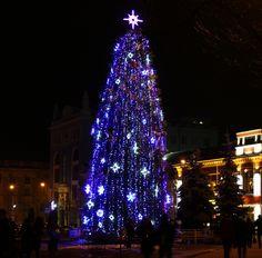 Weihnachtsbaum bild. Bildnummer 3400