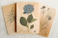 Night Owl Paper Goods Print Your Design on Wood (4Bar) 3-1/2 x 4-7/8