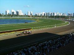 Gulfstream Park race track.