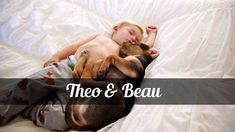 Theo and Beau by Anna Mayer Films Sweet Love Story, Love Is Sweet, Just Love, Love Him, Rescue Puppies, Gif Of The Day, Cute Gif, Childrens Books, Films