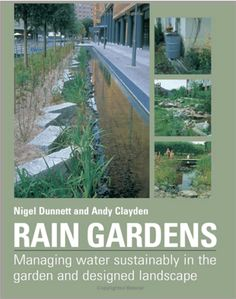 rain garden elements - Google Search