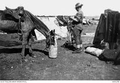 In the NSW Imperial Bushmen camp, South Africa, AWM Australia and the Boer War, The Veldt, Lest We Forget, British Colonial, War Horses, Vintage Photographs, Wwi, Armed Forces, World War, Military