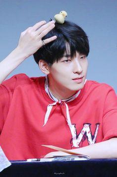 180804 at Nuri Dream Square Fansign © Humpback Seventeen Wonwoo, Seventeen Debut, Hoshi, Jeonghan, Vernon, Hip Hop, Boo Seungkwan, Love You Very Much, Adore U