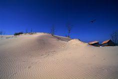 파란 하늘 아래 겹겹이 쌓인 모래가 전하는 이국적인 정취, 태안 신두리 해안사구