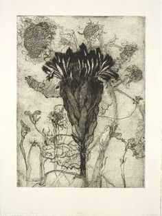 "Katie DeGroot(American)  Protea  from the series ""A Tribute to Dead Flowers""  2014   intaglio   30"" x 22"""