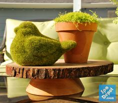 Get your patio or outdoor space ready for summer!