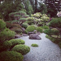 Take a stroll through the oldest Japanese garden in California.