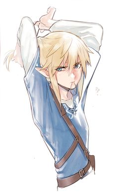 What? It's not my fault that you fell into the water! *sighs* Well...ok...maybe it was, but just a little, Link!!!