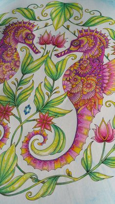 ... from Johanna Basford's Lost Ocean colouring book | by sacredrosecrafts. '