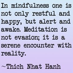 """""""In mindfulness one is not only restful and happy, but alert and awake. Meditation is not evasion; it is a serene encounter with reality.""""  -Thich Nhat Hanh #quotes"""