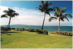 Wailele has a large yard facing the ocean