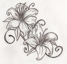 Black and White Tiger Lily Sketch Tattoo, Tiger Lily Tattoo Designs Trendy Tattoos, Cute Tattoos, Body Art Tattoos, Sleeve Tattoos, Tatoos, Tiger Lily Tattoos, Lily Flower Tattoos, Tattoo Flowers, Lily Tattoo Design
