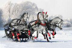 Русская тройка ! Новый год уже в пути !!
