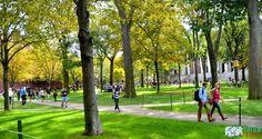 O zi la Harvard