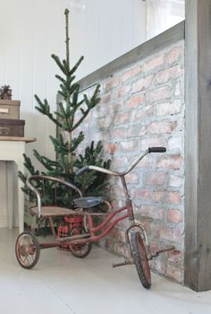 Vintage Tricycle. My sister had one like this.