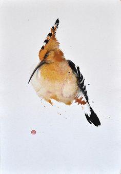 Hoppoe.  One of my favorite birds